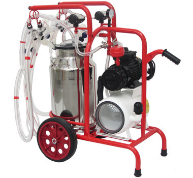 Cow Cleaning Machine < Equipment for cattle < Products < Fda Srl